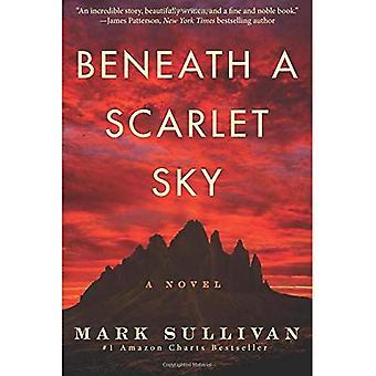 Sob um céu escarlate: um romance