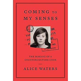 Coming To My Senses: The makings of a counterculture� cook