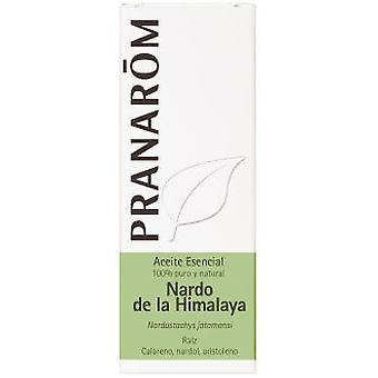 Pranarom Nardo Himalaya Bio Essential Oil 5ml.