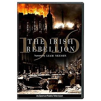1916: The Irish Rebellion [DVD] USA import