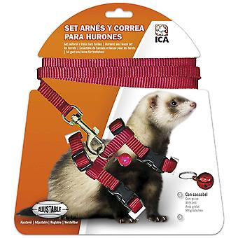 Ica Arn?s Huron (Small pets , Leads & Harnesses)