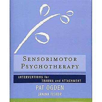 Czuciowo psychoterapii: Interwencje Trauma i załącznik (Norton z serii na neurobiologii interpersonalnych)