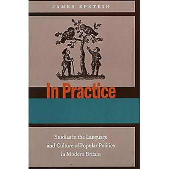In de praktijk: Studies in de taal en cultuur van de populaire politiek in moderne Groot-Brittannië