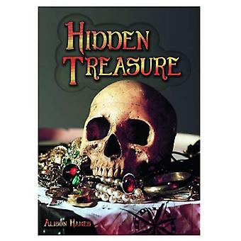 Hidden Treasure (Wow! Facts (Bl))