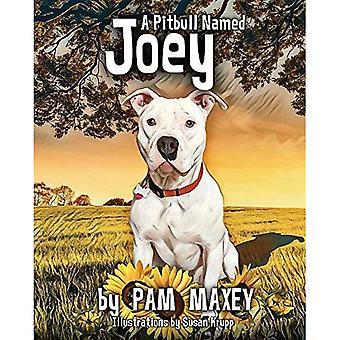 Un Pitbull nommé Joey (Pitbull nommé Joey)