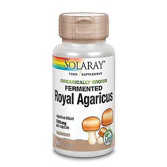 Solaray Organically Grown Royal Agaricus Mushroom Vcaps 60 (76028)