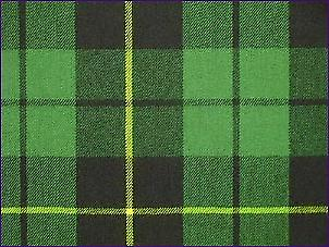 Wallace Hunting Green, Ancient - Pure Wool Tartan