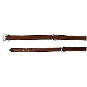 Trixie Active Collar Cognac (Dogs , Collars, Leads and Harnesses , Collars)