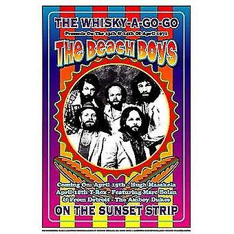 Beach Boys 1971 Whisky gehen gehen Poster Print von Dennis Loren (14 x 20)
