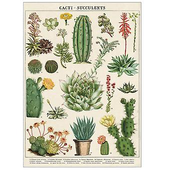 Cavallini Cacti & Succulents Wrapping Paper / Poster