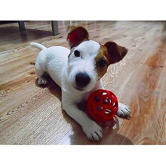 JW Pet Hol-ee Roller gummi hund stykke legetøj
