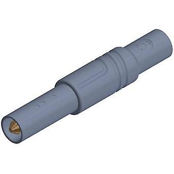 SKS Hirschmann LAS S G Straight blade safety plug Plug, straight Pin diameter: 4 mm Grey 1 pc(s)