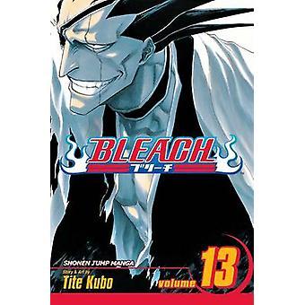 Bleach by Tite Kubo - Tite Kubo - 9781421506111 Book
