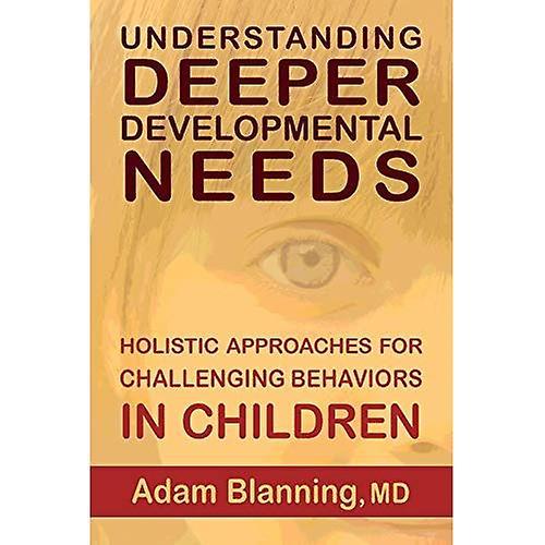 Understanding Deeper Developmental Needs: Holistic Approaches for Challenging Behaviors in Children
