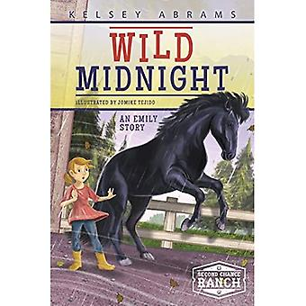 Wild Midnight: An Emily Story