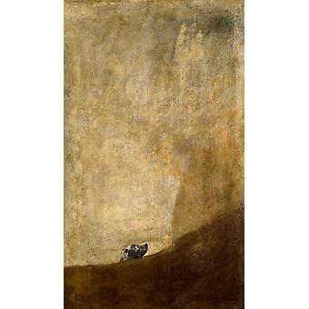 The Dog,Francisco Goya,60x35cm
