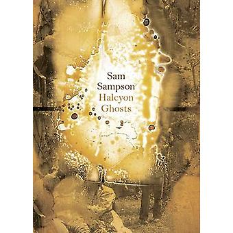 Halcyon Ghosts by Sam Sampson - 9781869408169 Book