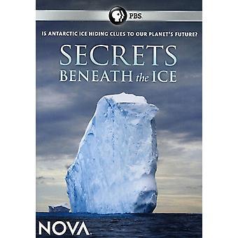 Nova - Nova: Secrets Beneath the Ice [DVD] USA import
