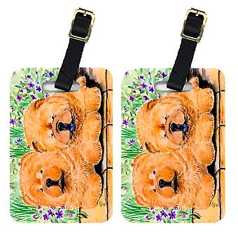 Carolines Treasures  SS8123BT Pair of 2 Chow Chow Luggage Tags