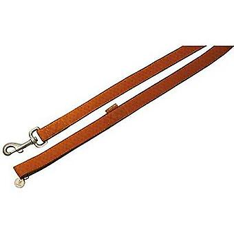 Nayeco MacLeather dog leash brown XL (Dogs , Collars, Leads and Harnesses , Leads)