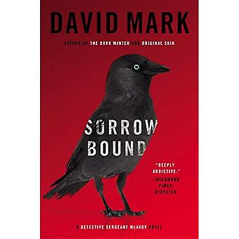 Verdriet gebonden: Een Detective Sergeant McAvoy roman