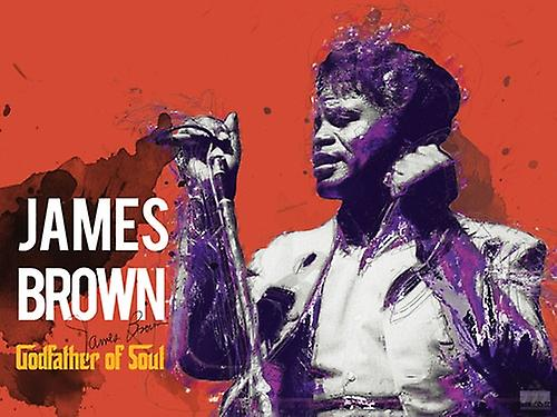 James Brown Poster Godfather Of Soul Music Art Print (24x18)