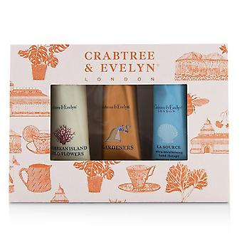 Crabtree & Evelyn Bestsellers Hand Therapy Set (1x Caribbean Island Wild Flowers 1x Gardeners 1x La Source) - 3x25g/0.9oz