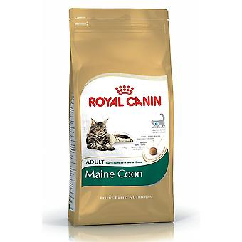 Royal Canin chat nourriture Maine Coon 31 10kg