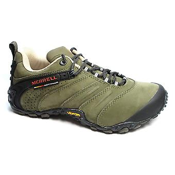 Merrell Chameleon II Leather J80549 trekking  men shoes