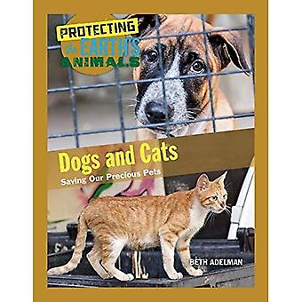 Dogs and Cats: Saving Our Precious Pets (Protecting the Earth's Animals)