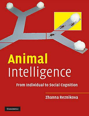 Animal Intelligence From Individual to Social Cognition by Reznikova & Zhanna