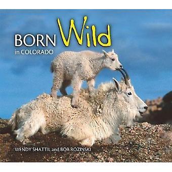 Born Wild in Colorado by Wendy Shattil - Bob Rozinski - 9781560374121