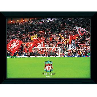 Immagine Liverpool The Kop 16 x 12