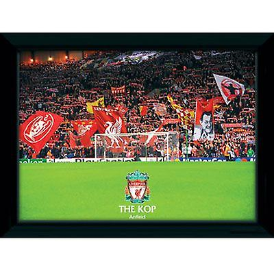 Liverpool Picture The Kop 16 x 12