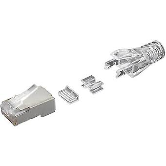 RJ45 connector CAT 6 Plug, straight Number of pins: 8P8C SS-39200-036