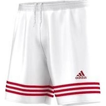 Adidas Entrada 14 F50636 calças de homens todos os anos de formação