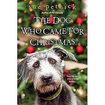 Koira, joka tuli jouluksi