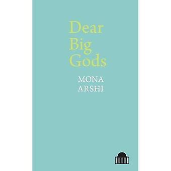 Dear Big Gods (Pavilion Poetry)
