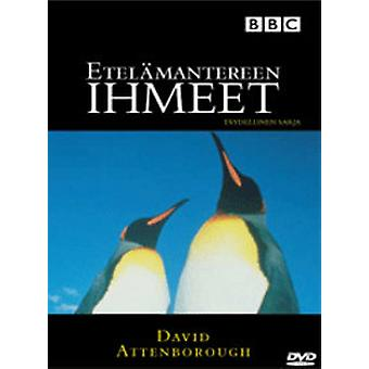 The Antarctic wonders-Life in the Freezer (DVD)