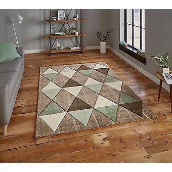 Brooklyn 21896 Beige Green  Rectangle Rugs Modern Rugs