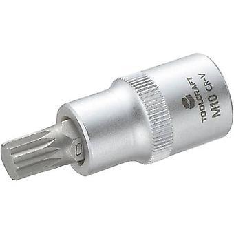 XZN socket Bit 10 mm