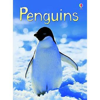 Penguins by Emily Bone - Jenny Cooper - Tim Haggerty - 9780746099667
