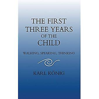 The First Three Years of the Child: Walking, Speaking, Thinking (Classics of Anthroposophy)
