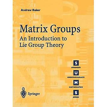 Matrix grupper: En introduktion till lögn gruppteori (Springer grundutbildningsprogram matematik)