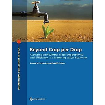 Bortom gröda per droppe: bedömning av jordbrukets vatten produktivitet och effektivitet i en mognads vatten ekonomi (internationell utveckling i fokus)
