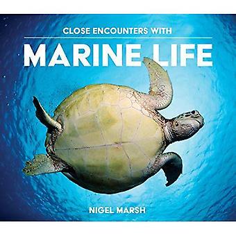 Närkontakt med marint liv