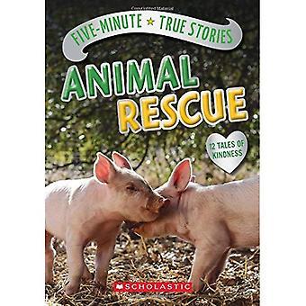 Fünf Minuten wahre Geschichten: Tierrettung
