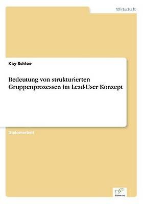 Bedeutung von strukturierten Gruppenprozessen im LeadUser Konzept by Schloe & Kay