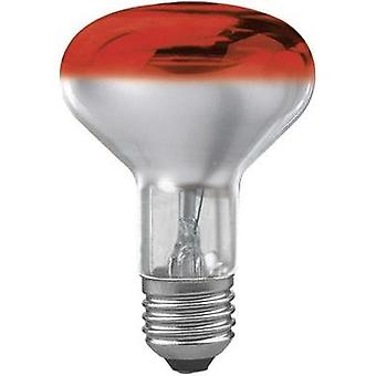 Light bulb 116 mm Paulmann 230 V E27 60 W Red EEC: E Reflector bulb dimmable Content 1 pc(s)