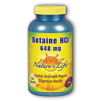 Nature's Life Betaine HCL Capsule 648 mg 250 ct